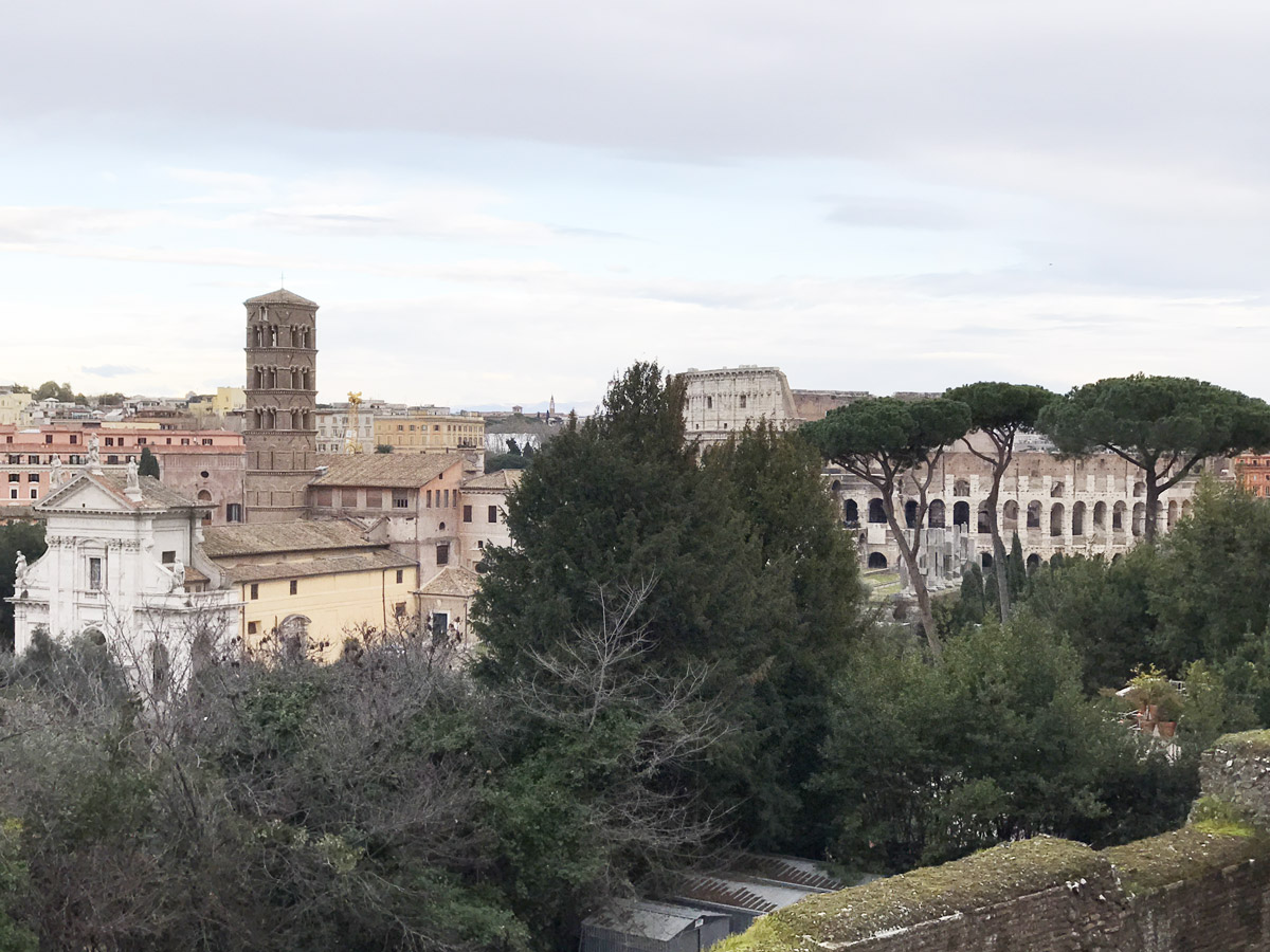Colosseum Roman Forum Palatine Hill Tour View