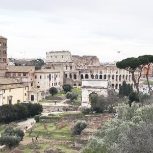 Colosseum Roman Forum Palatine and Hill Tour