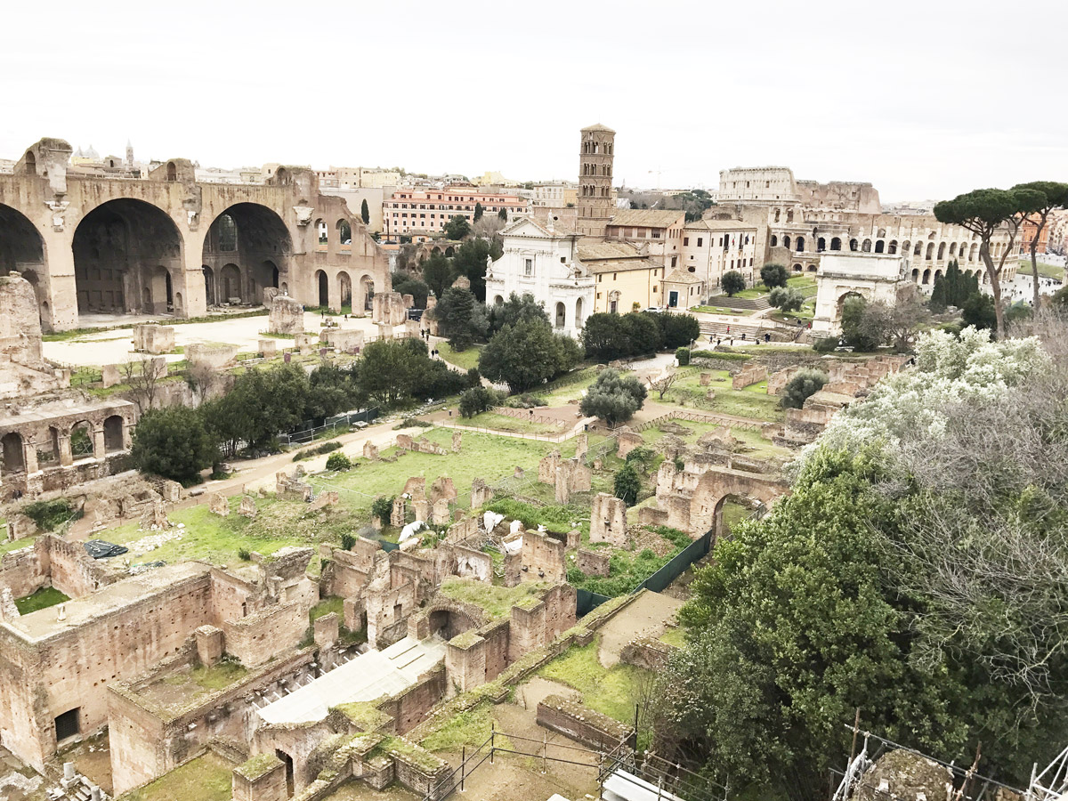 Colosseum and Roman Forum Palatine Hill Tour